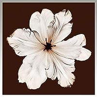 (アートフレーム) Steven N.Meyers Ruffled Tulip