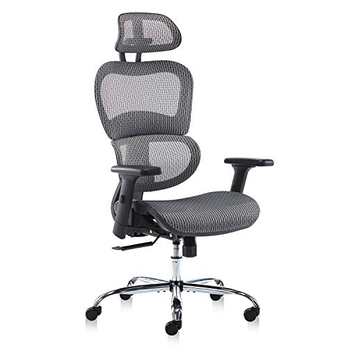 Office Chair, Ergonomics Mesh Chair Computer Chair Desk Chair High Back Chair w/Adjustable Headrest and Armrests - Grey