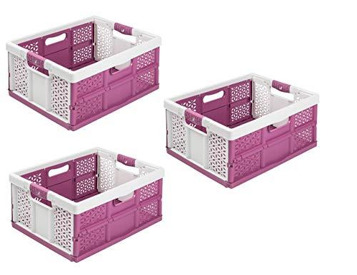 keeeper Lot de 3 boîtes pliables professionnelles avec poignées souples Blanc/baies 32 l jusqu'à 40 kg