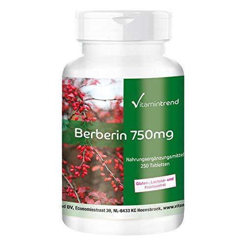Berberina HCL 750mg - altamente dosato con zinco - vegano - 250 compresse