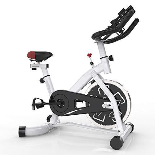 HLEZ Bicicleta estática Profesional, Pantalla LCD y Resistencia Variable transmisión por Correa silencioso - Peso máximo 150kg