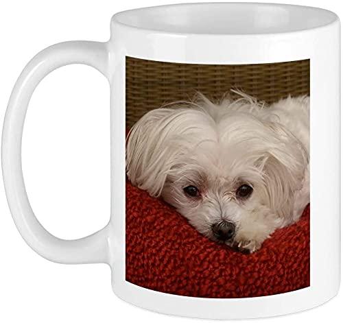 Taza de café maltesa de 14 onzas, apta para microondas y lavaplatos, cachorro maltés, blanco