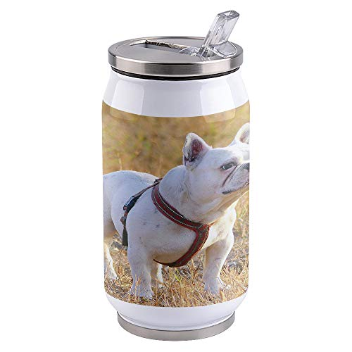 10 OZ Stainless Steel Tumbler with Lid Vacuum Insulated Mug Double Wall Travel Cups for Coffee Tea and Hot Beverage, White French Bulldog Cute Dog Pet Lawn