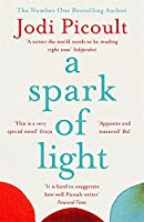 A Spark of Light: THE NUMBER ONE SUNDAY TIMES BESTSELLER