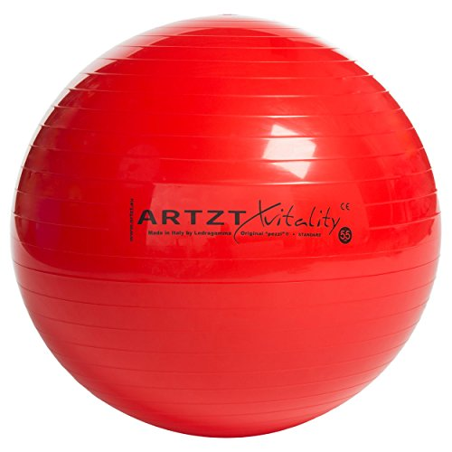 ARTZT vitality Fitness Ball Professional 65cm 1 Stück