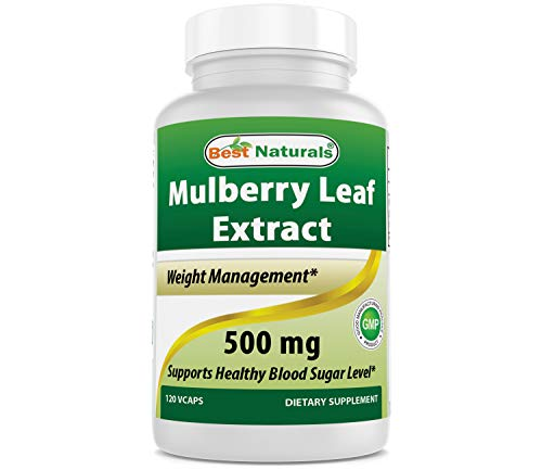 Best Naturals Mulberry Leaf Extract, 500 Mg, 120 Count
