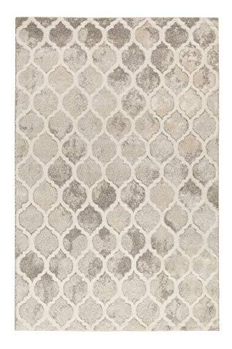 Weicher Softer Vintage Teppich - Läufer für Wohnzimmer, Flur, Schlafzimmer, Replay (160 x 225 cm, beige grau)