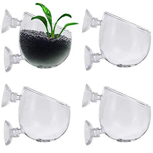 Smavles Aquarium Pflanzenhalter 4 Pcs Aquarium Glas Cup Topf Glas Cup Aquarium Pflanzenhalter für Aquarium-Landschaft Dekorationen