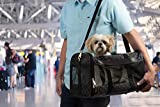 Sherpa, Original Deluxe Travel Pet Carrier, Airline Approved, Padded, Washable, with Carrying Strap, Mesh Windows, Safety Locks, Spring Frame, Black Lattice, Large