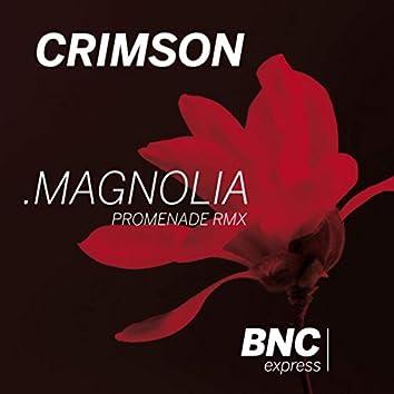 Magnolia (Promenade  Remix)