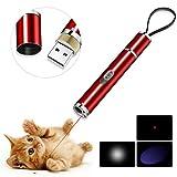 BiuCat C6 LED Pointer Katzen Hund 3 in 1 Katze Chaser Spielzeug Katze interaktive Spielzeug, USB-Direktladung, Geschenkbox (Pink)