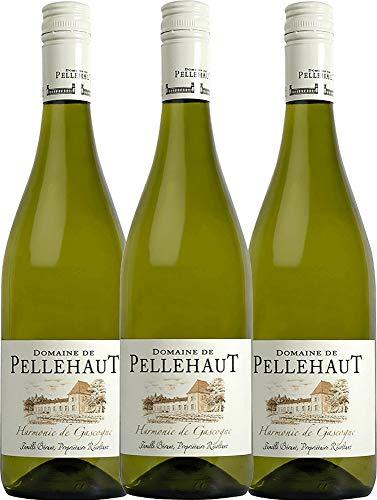 VINELLO 3er Weinpaket Weißwein - Harmonie de Gascogne Blanc 2019 - Domaine de Pellehaut mit Weinausgießer | veganer Weißwein | französischer Sommerwein aus Sud Ouest | 3 x 0,75 Liter