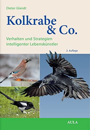 Kolkrabe & Co.: Verhalten und Strategien intelligenter Lebenskünstler