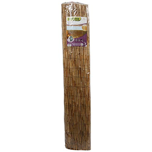 Desconocido 170971 - Bambú Chino Reedcane