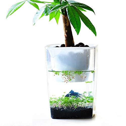 Acuario de acrílico ecológico de Leking, acuario de escritorio, acua