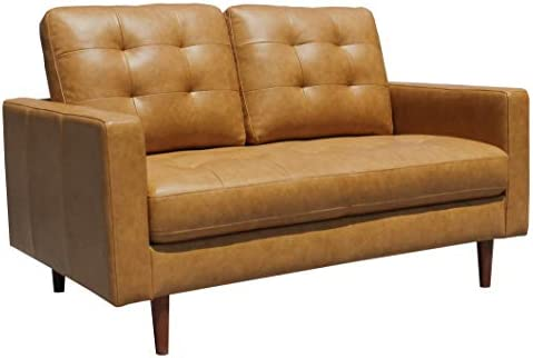 Best Amazon Brand – Rivet Cove Modern Tufted Loveseat with Tapered Legs, Mid-Century, 56