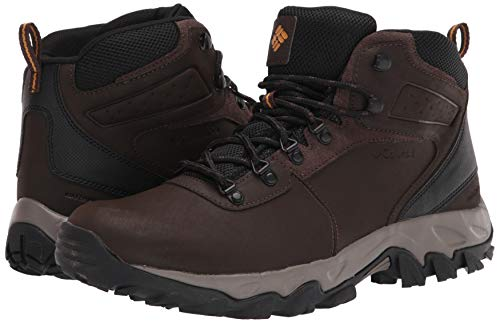 Columbia mens Newton Ridge Plus Ii Waterproof Hiking Boot, Cordovan/Squash, 7 US