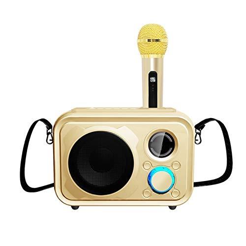 KJCHEN Ponente de Mano Micrófono Micrófono Móvil Universal Portátil Inalámbrico Bluetooth Inicio Usuarios Inicio Fuera de Audio de Micrófono KTV (Color : Gold)
