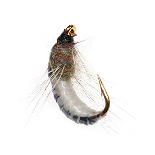 CloudWhisper 6 Pcs Realistic Nymph Scud Flies, 12 Super Sturdy Hooks Insect Lures Wet Flies for Trout Nymph Beadhead Fishing