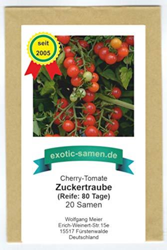 Rote, süße Cherry-Tomate - auch für den Kübel - Zuckertraube - 20 Samen