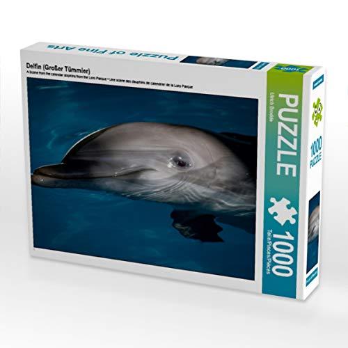 CALVENDO Puzzle Delfin (Großer Tümmler) 1000 Teile Lege-Größe 64 x 48 cm Foto-Puzzle Bild von Ulrich Brodde
