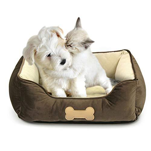 Fluffy Paws Pet Lounger Pet Bed Premium Bedding