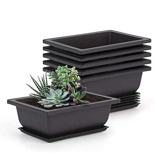 Tiamu Vaso per fiori rettangolare per bonsai, 6 Vasi per Piante in Plastica con vassoio er giardino, cortile, soggiorno, 22,5 x 16,5 cm