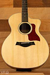 Taylor 214ce Review: The Most Popular Acoustic Guitar Ever 1