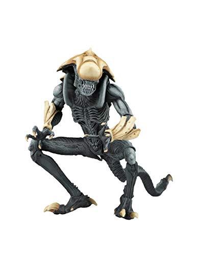 NECA Alien vs Predator Actionfigur Arcade Chrysalis Alien Multicolor, aus Kunststoff, Hersteller