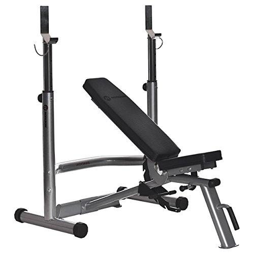 Horizon Fitness Hantelbank + Langhantelablage Adonis Plus