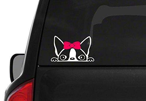 Peeking Boston Terrier Girl (A24) Pink Bow Vinyl Decal Sticker Car Laptop Window