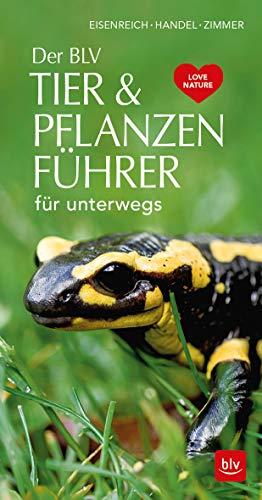 Der BLV Tier & Pflanzenführer: für unterwegs