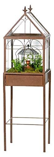Plant terrarium with case