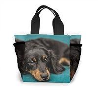 黒の長い髪のダックスフント犬 大容量ハンドエコバッグ ランチバッグ買い物袋手提げ袋両側の独立した網袋 通勤 通学 旅行 (Portable Insulated Lunch Bag)