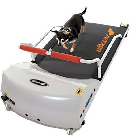 Go Pet Petrun Pr700 Dog Treadmill Indoor Exercise / Fitness Kit