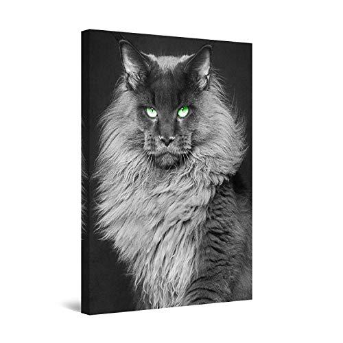 Startonight Impression sur Toile Chat, Art Encadré Imprimée Tableau Motif Moderne...
