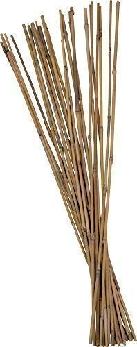 50 Stück Tonkinstäbe Bambusstäbe Pflanzstäbe Ø 10-12 mm x 120 cm