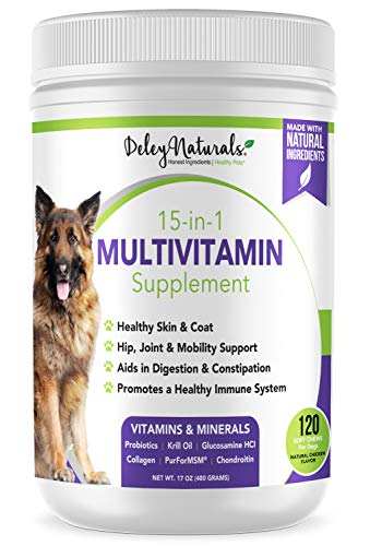 Deley Naturals 15 in 1 Dog Multivitamin Treats - Immune System, Skin & Coat, Joint Support & Digestion - Vitamins for Dogs of All Ages - Made in USA - Chicken Flavor - 120 Grain Free Soft Chews