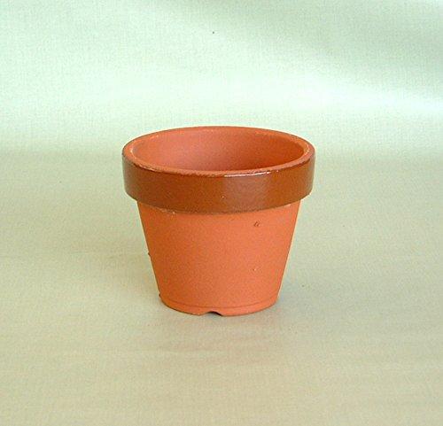 駄温鉢 駄鉢 深型 (5号) *国産植木鉢* 常滑 素焼き鉢 陶器鉢 テラコッタ 盆栽 山野草