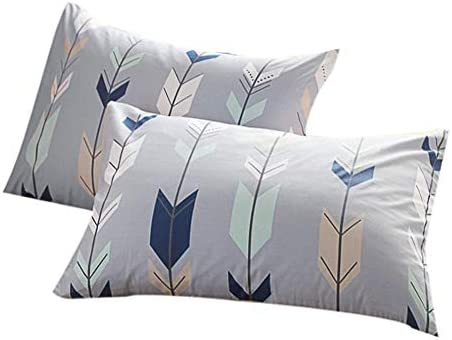 FenDie Pillow Cases Set of 2 Arrow Feather Printed Pattern Standard Size 20 x 26 Pillow Protectors product image
