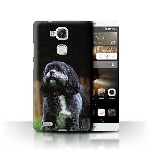 Hülle Für Huawei Ascend Mate7 H&/Eckzahn Rassen Shih Tzu Design Transparent Ultra Dünn Klar Hart Schutz Handyhülle Case