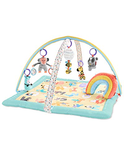 Skip Hop Baby Activity & Entertainment Products - Best Reviews Tips