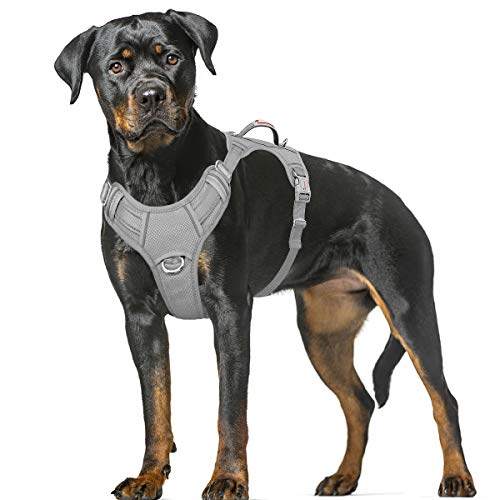 BARKBAY No Pull Dog Harness Large Step in Reflective Dog Harness with Front Clip and Easy Control Handle for Walking Training Running with ID tag Pocket(Grey,XL)