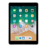 Apple Ipads - Best Reviews Guide