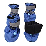 royalwise Dog Boots Pet Shoes Soft and Breathable for Small Dogs 6-15lb All Weather (Medium, Blue)