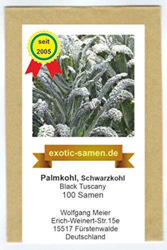 Palmkohl - Schwarzkohl - CAVOLO NERO DI TOSCANA - milder als Grünkohl - 100 Samen