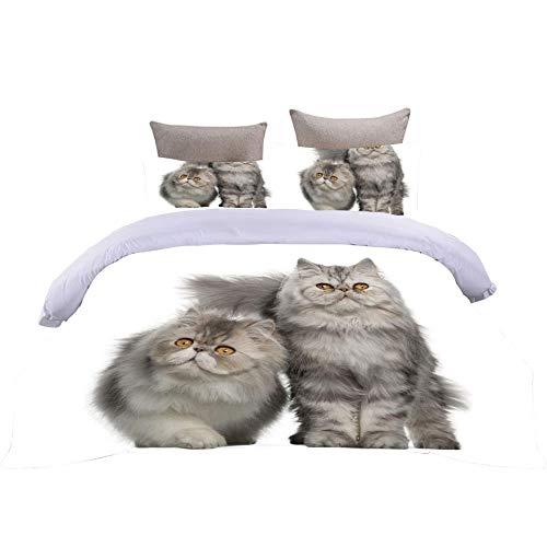 Bbaodan 3D Digital Print Bedding Set Grey Cat Superking Modern Breathable Bedding Set With Hidden Zipper Closure, Hypoallergenic Soft Microfiber / 102 X 86 Inch