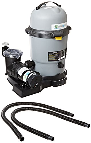 Waterway Plastics FDS441027-3BD De Filter System