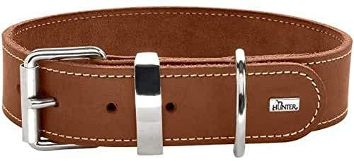 HUNTER AALBORG SPECIAL Hundehalsband, Leder, strapazierfähig, komfortabel, 55 (M), cognac