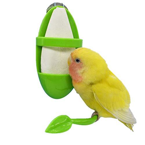 Alimentador de loros para pájaros con estante de pie, para colgar en jaula de pájaros, utilizado para contener frutas, huesos de sepia y verduras, suministros para pájaros para la salud de las